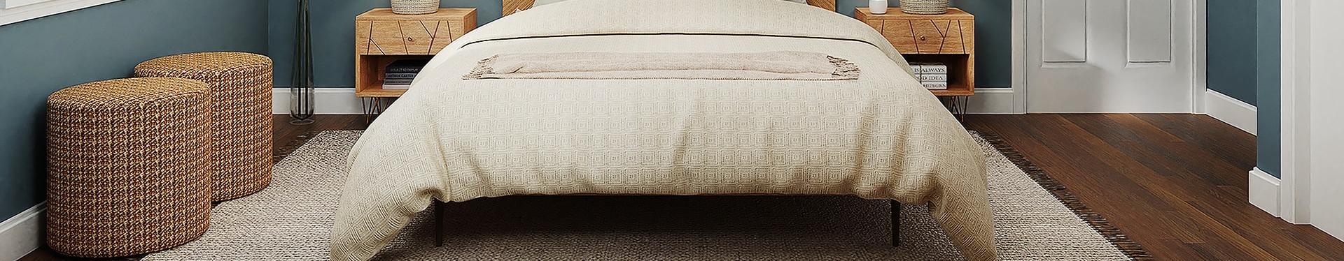 make your own bedbug traps
