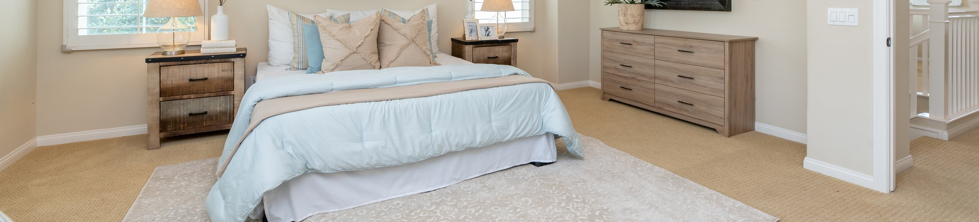 free bedbug inspections